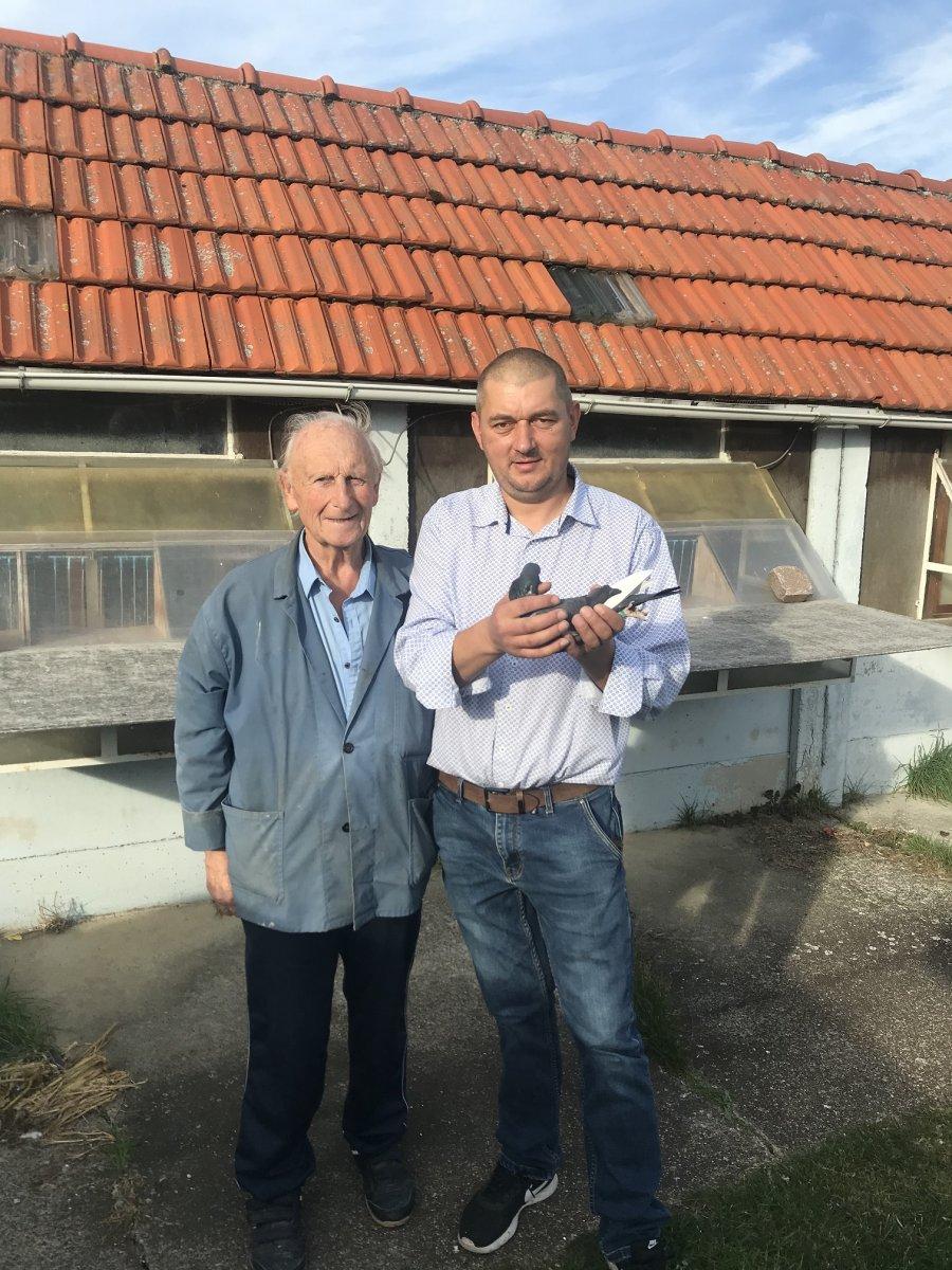 Z wizytą u Belgijskiego hodowcy Schroyens-Hermans, Itegem.